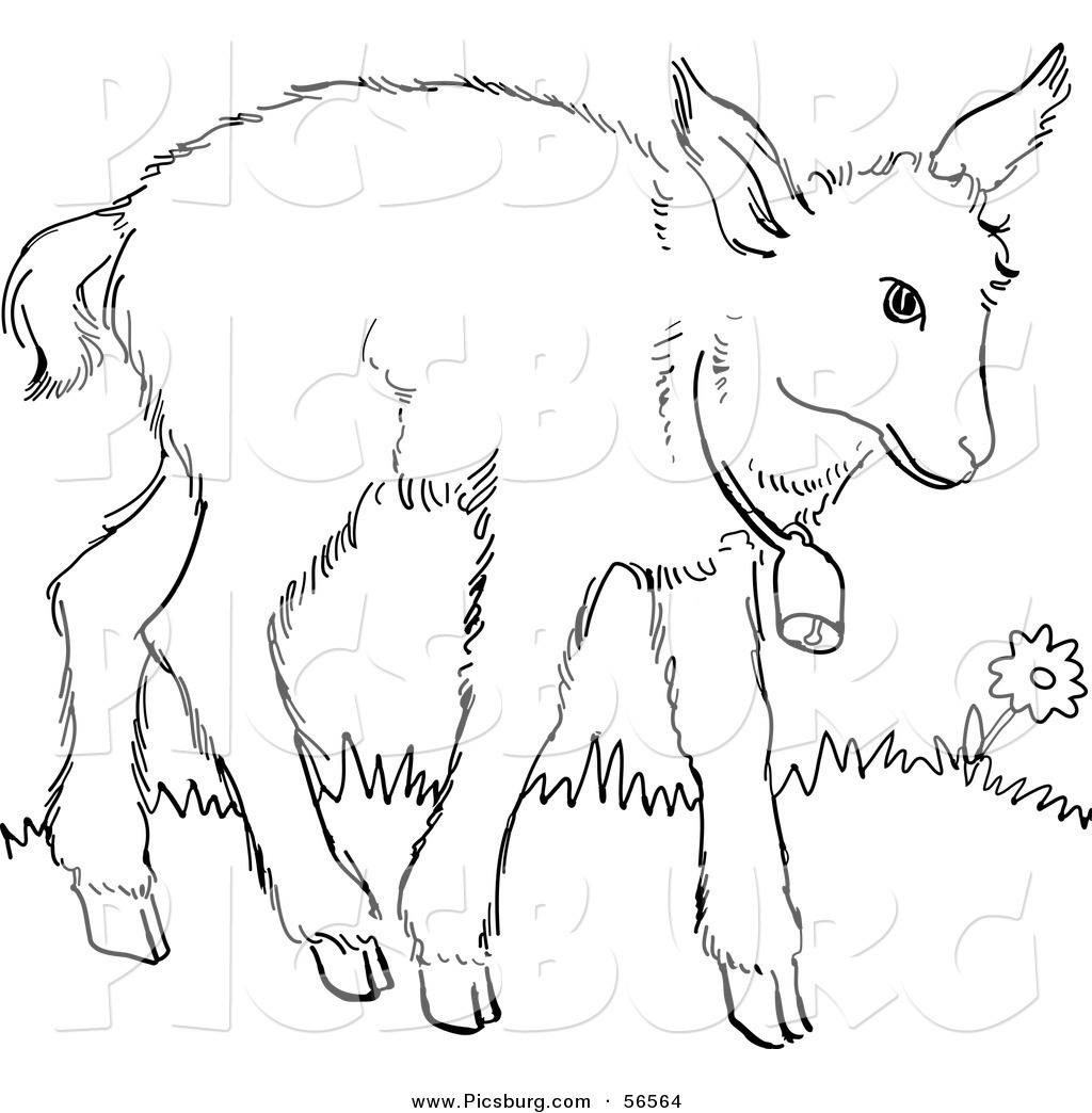 Line Art Farm Animals : Black and white baby animals clip art