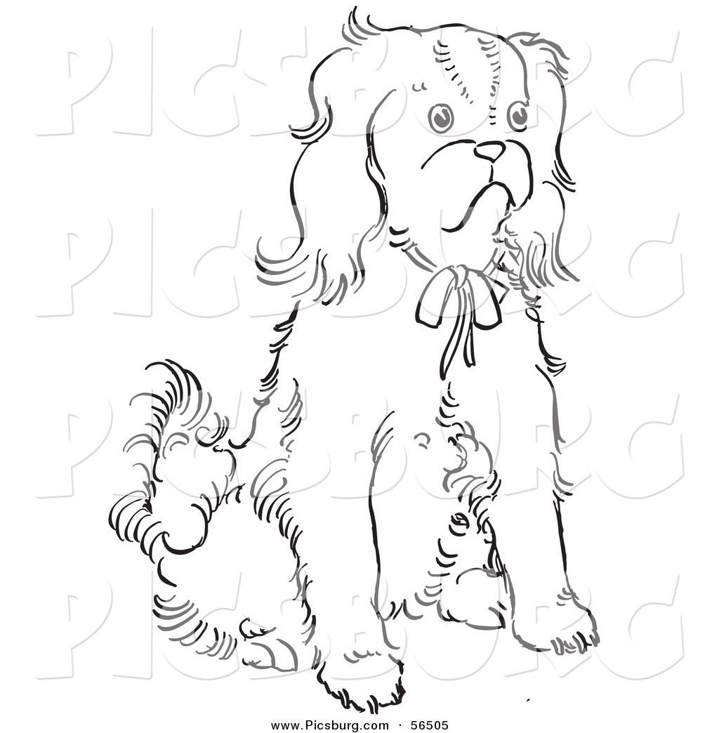 Clip Art Of A Cavalier King Charles Spaniel Dog Sitting On Ground