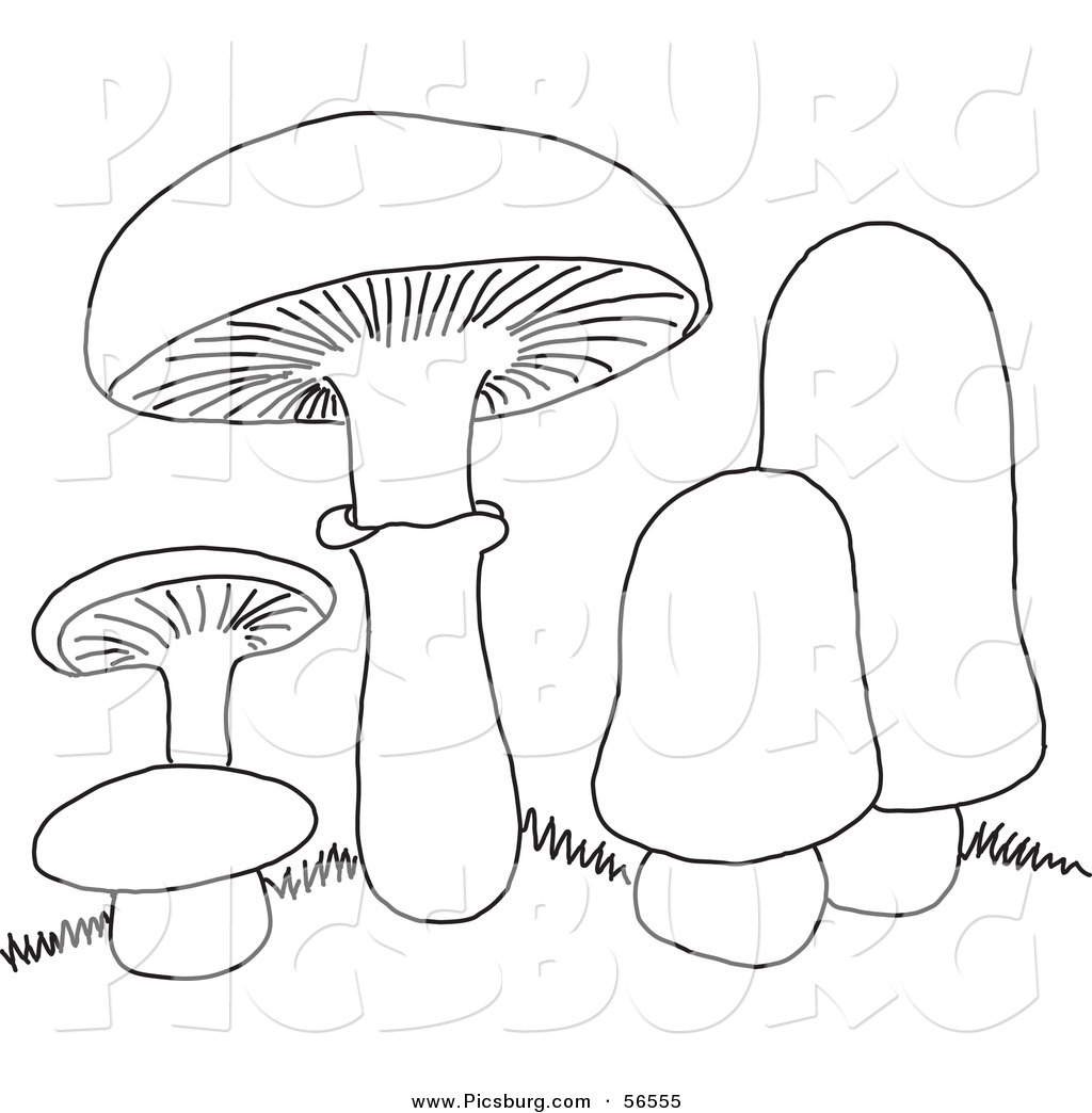 clip art of a coloring page of mushrooms by picsburg 56555