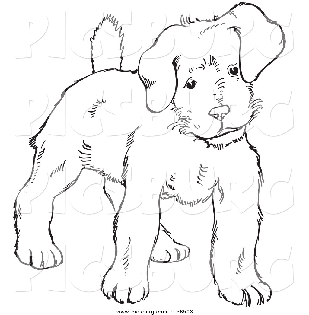 Clip art of a puppy dog looking alert black and white line art by