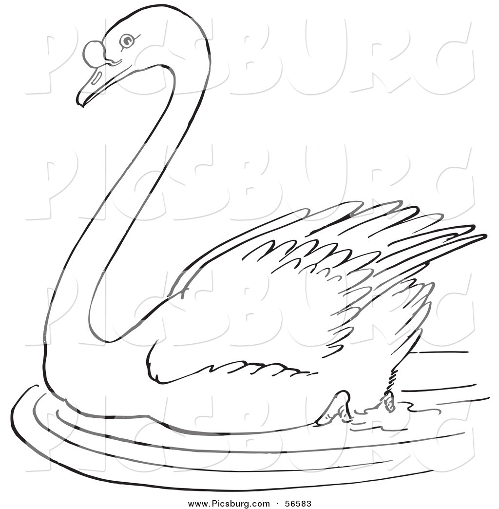 clip art of a swimming swan in a pond black and white line art