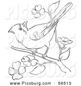 Clip Art of a Cardinal Bird on a Blossoming Tree Branch - Black and White Line Art by Picsburg