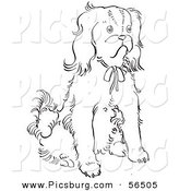 Clip Art of a Cavalier King Charles Spaniel Dog Sitting on Ground - Black and White Line Art by Picsburg