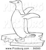 Clip Art of a Cute Penguin Flapping Wings on Floating Ice - Black and White Line Art by Picsburg