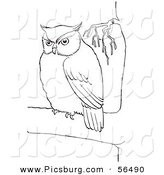 Clip Art of a Fat Owl in a Tree - Black and White Line Art by Picsburg