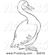 Clip Art of a Goose on Land - Black and White Line Art by Picsburg