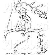 Clip Art of a Monkey Eating Fruit out of a Tree - Black and White Line Art by Picsburg