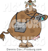 Clip Art of a Photographer Cow Taking Photographs with a Digital Camera in His Hands by Djart