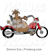 Clip Art of a Rebel Male Bull Cow Driving a Motorcycle by Djart