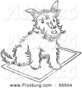 Clip Art of a Scottie Dog Sitting on a Rug - Black and White Line Art by Picsburg