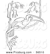 Clip Art of a Wild Toucan in a Tree with Many Branches - Black and White Line Art by Picsburg