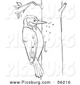 Clip Art of a Woodpecker on a Tree - Black and White Line Art by Picsburg