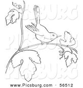 Clip Art of a Wren on a Tree Branch - Black and White Line Art by Picsburg