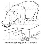 Clip Art of a Zoo Hippo Standing on a Pool Platform with Stairs - Black and White Line Art by Picsburg