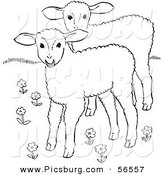 Clip Art of Two Lambs in a Flower Field - Black and White Line Art by Picsburg