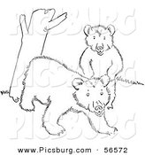 Clip Art of Two Playful Bear Cubs Beside a Tree Trunk - Black and White Line Art by Picsburg