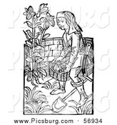 Vector Clip Art of a Black and White Retro Woodcut Medieval Man Carrying a Basket in a Garden by Picsburg