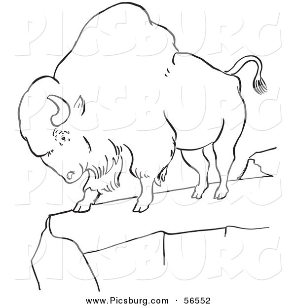 Clip Art of a Bison Standing on a Cliff - Black and White Line Art