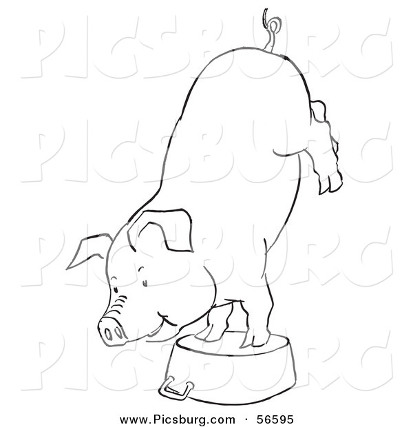 Clip Art of a Circus Pig Doing Handstand on a Metal Pot - Black and White Line Art