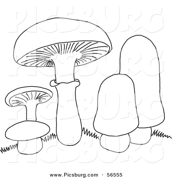 Clip Art of a Coloring Page of Mushrooms