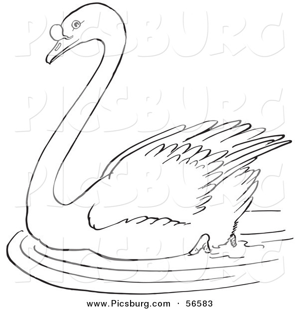 Clip Art of a Swimming Swan in a Pond - Black and White Line Art