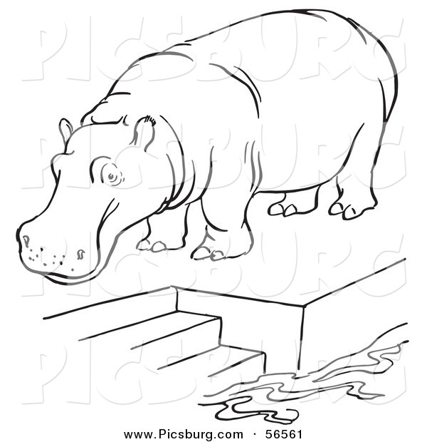 Clip Art of a Zoo Hippo Standing on a Pool Platform with Stairs - Black and White Line Art