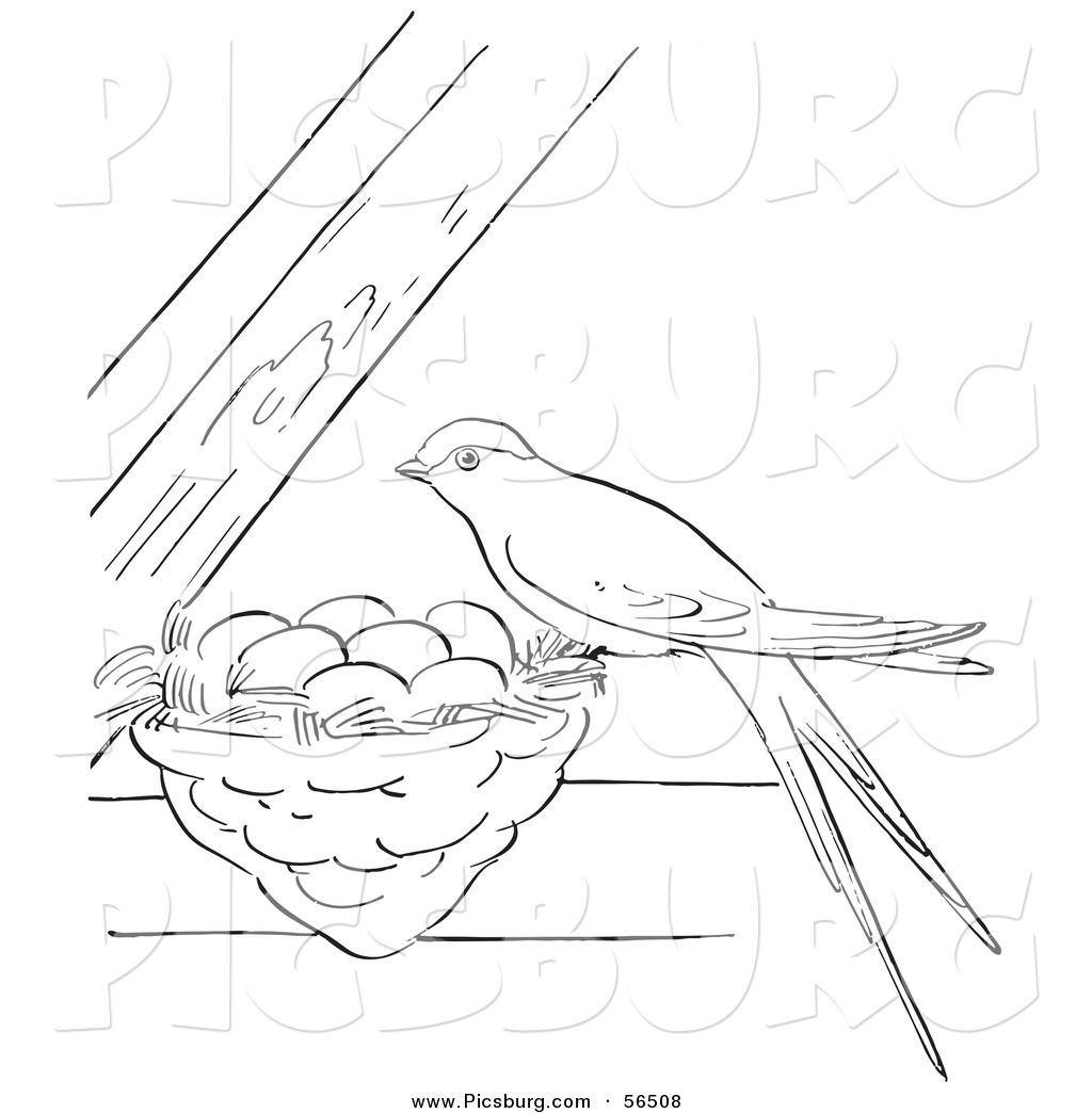 Clip Art Of A Swallow Bird On Its Nest Between Beams